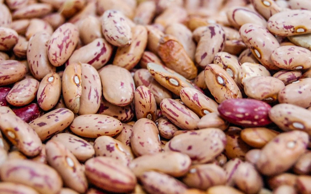 Twice As Mexican: Charro Beans